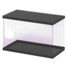 Fauna box Cristal con marco negro